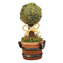 Miniature Boxwood  -  Set of Three  -  6cm / 2,5 inch